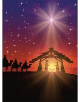 Kerstdraagtasje